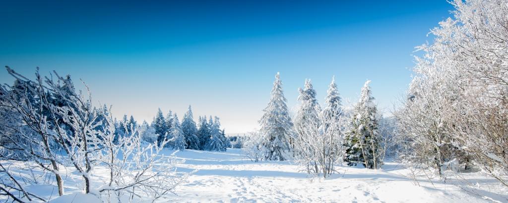paisaje-invierno