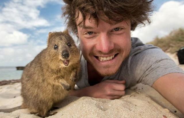 Selfies más chulos con animales
