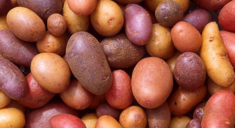 curiosidades sobre las patatas