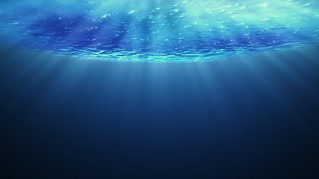 Curiosidades sobre el fondo marino y el océano