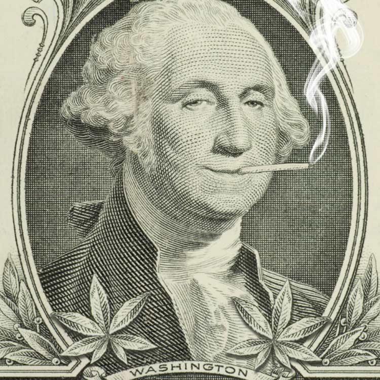 curiosidades sobre la marihuana-george washington cultivaba