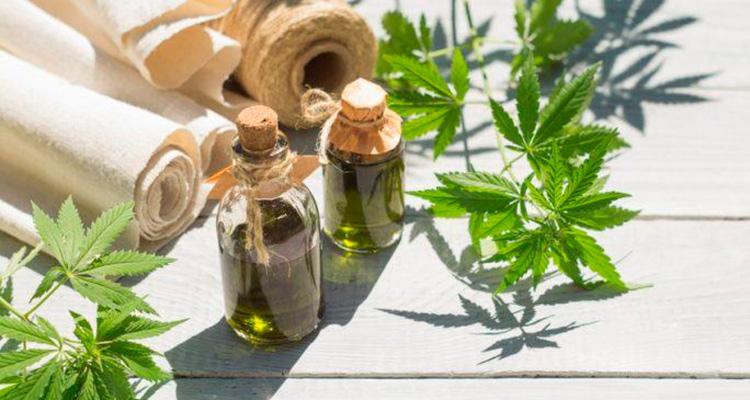 uso agricultura marihuana-curiosidades